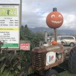Chilliwack Corn Maze & Pumpkin Farm | Mr. Locksmith Blog